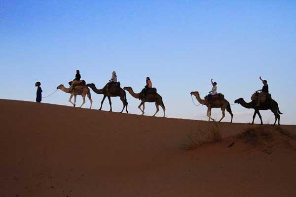 ไปขี่อูฐนอนค้างที่ทะเลทรายซาฮาร่ากัน